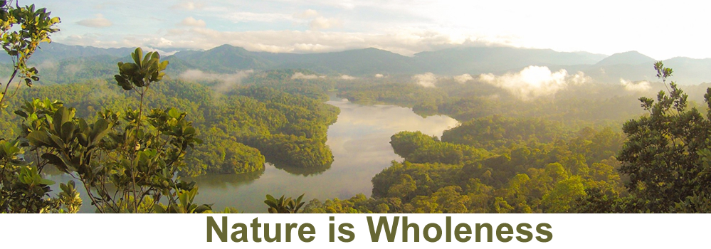 Nature is Wholeness