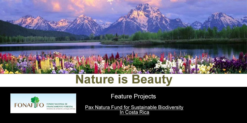 Fund For Sustainable Biodiveristy in Costa Rica