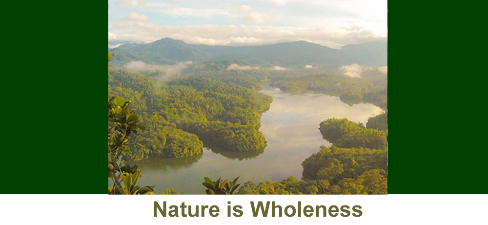 Nature is Wholness