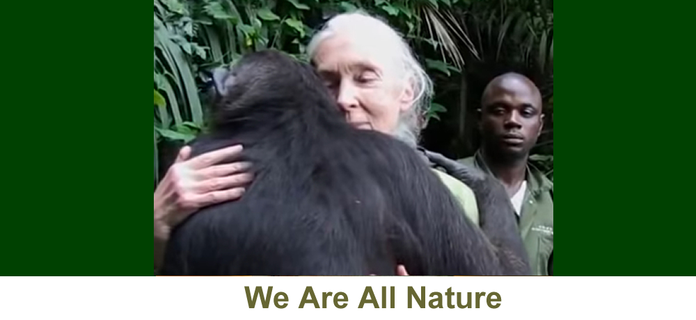 We are all Nature