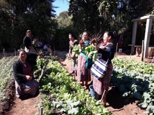Pax Natura - Guatemalan Campesino-a-Campesino Project in San Martin, Jilotepeque, Chimaltenango, Guatemala